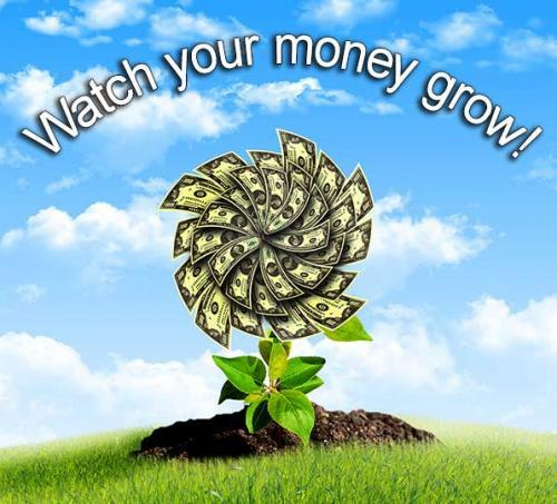 watch your money grow with kasasa